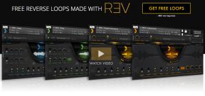 output_rev_free